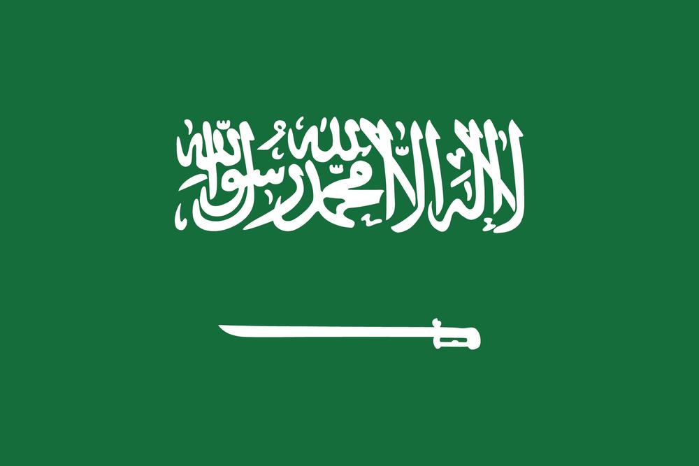 .png - الفرص الاستثمارية في السعودية 2030