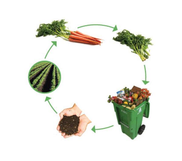 دراسة جدوى مشروع إعادة تدوير بقايا الأطعمة لإنتاج السماد