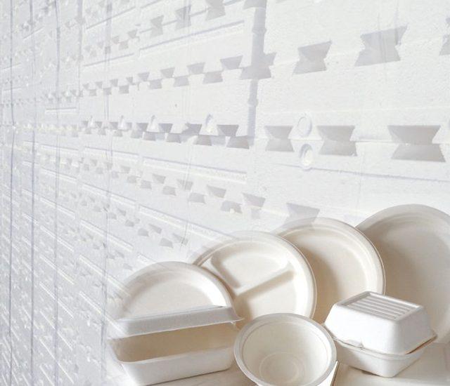 دراسة جدوى مصنع إنتاج البولسترين