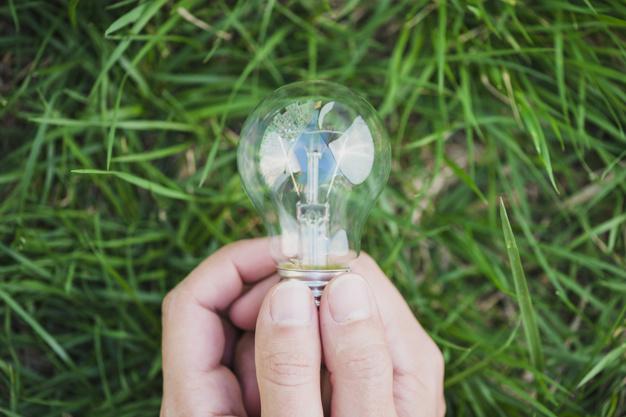 close up of two hands holding light bulb against green grass 23 2147817155 - كيف تختار مشروعك التجاري ؟