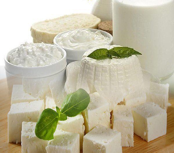 دراسة جدوى مشروع معمل إنتاج الجبن الابيض والقشدة باستثمار 300ألف دولار
