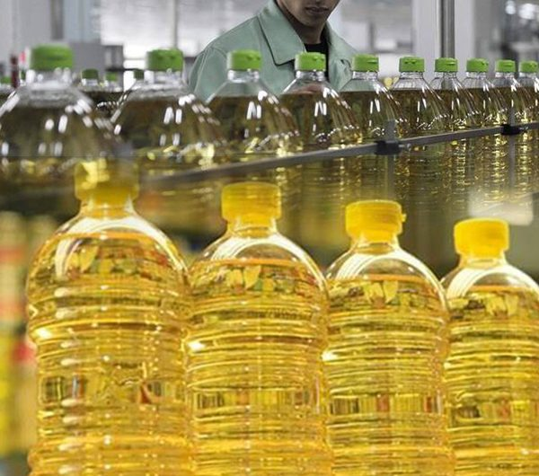 دراسة جدوى مشروع مصنع إعادة تدوير زيوت الطعام باستثمار 2 مليوندولار