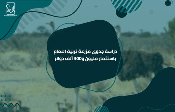 دراسة جدوى مزرعة تربية النعام باستثمار مليون و300 ألف دولار
