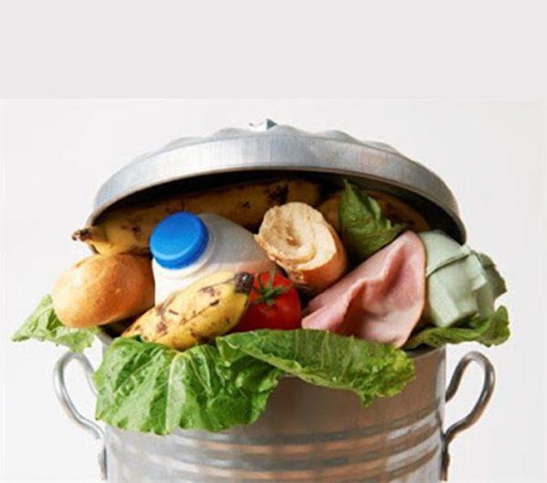 دراسة جدوى مشروع مصنع تدوير النفايات الغذائية الأوتوماتيكية باستثمار 8 مليون و 700 ألف دولار
