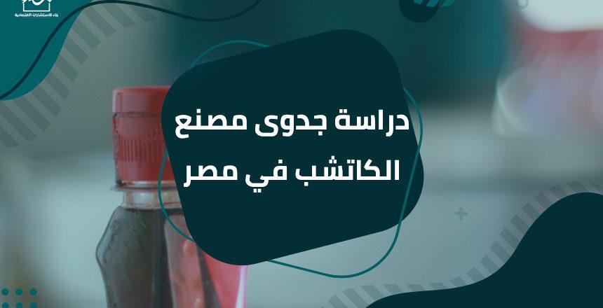 دراسة جدوى مصنع الكاتشب في مصر